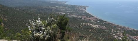 Gulf of Edremit