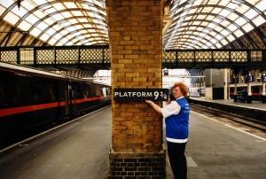 potter platform